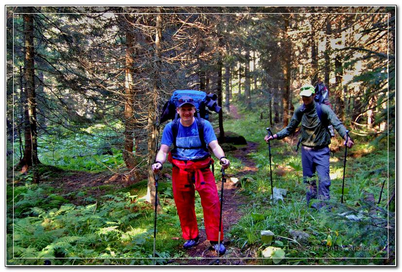 Cesta začína lesom Kôprovej doliny